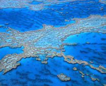 Aerial shot of part of the Great Barrier Reef.