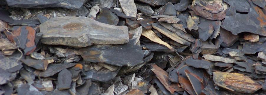 A pile of shale rocks.