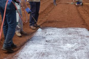 A prepared soil bed is being sprayed with a white liquid by a person using a hand held sprayer. Two other people are standing by and two more people are in the background.