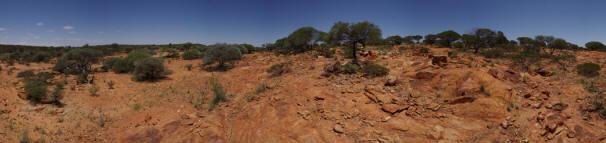 Red eath and vegetation in the Australian arid bushland.